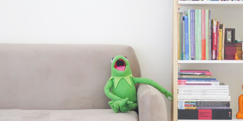 kermit the frog toy sitting on the couch with a book shelf of money books for kids next to him